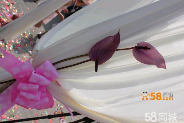 吉祥岛婚庆 各式婚礼预定中 服务人员 司仪督导金牌司仪 经验几百场